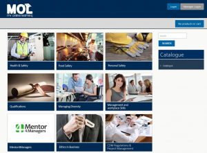 Online store interface - training services